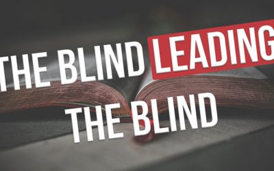 VIDEO: The Blind Leading The Blind