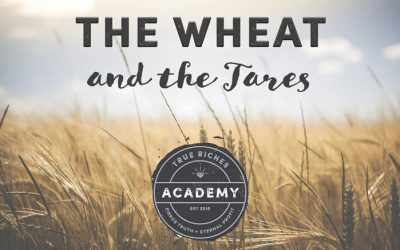 VIDEO TEACHING: The Wheat and the Tares